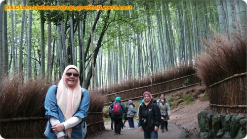 1j bamboo groove